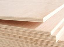 """<p>&nbsp; &nbsp; 临沂梓良木业有限公司位于山东临沂市兰山区,常年对外销售<strong>包装板</strong>、胶合板、家具板、建筑模板、生态板等产品,公司秉承以用户需求为核心,坚持""""质量到位、品牌服务""""的经营理念,在建筑建材-建材加工行业获得了客户的一致认可和高度评价。公司以为客户创造价值为己任,期待为您服务!</p><p>&nbsp; &nbsp; 公司生产的胶合板全部采用优质杨木、松木为基本原材料,经一次冷压处理后再经过高温高压最终成型,粘结牢固、经久耐用,模板的表面使用了一种特殊的防水工艺处理,坚硬而且光滑,不会出现开胶、变形等问题,是您采购胶合板产品的品牌。欢迎广大新老客户和社会各界朋友莅临参观,洽谈选购。</p><p><br/></p>"""