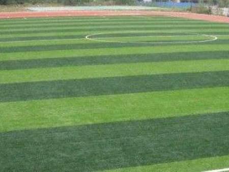重庆人造草坪