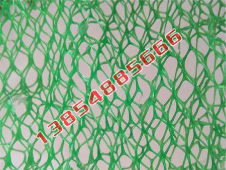 三维植被网生产厂家