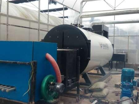 长城牌生物质燃料锅炉
