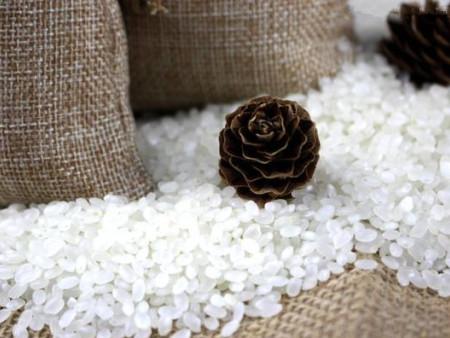 盤錦大米批發價格