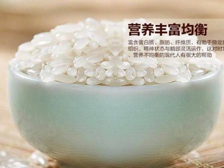 盘锦胚芽大米