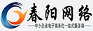河南春阳网络有限公司