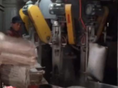 包装机现场包装视频