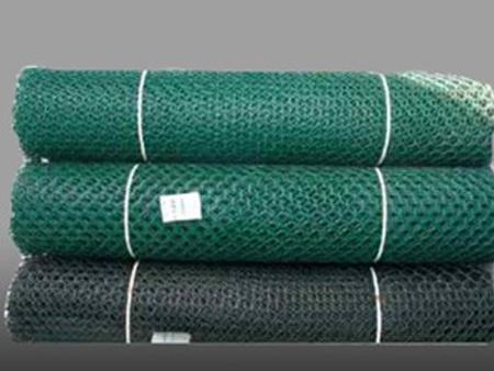 聚乙烯土工网