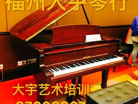 福州大宇琴行 乐器培训中心 坚持学乐器5年以上孩子逆商超人 钢琴培训/古筝培训/小提琴培训