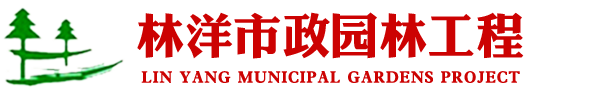 河南林洋市政园林工程有限公司