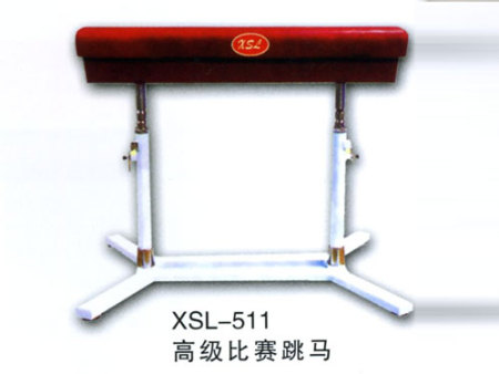 XSL-513高级比赛跳马