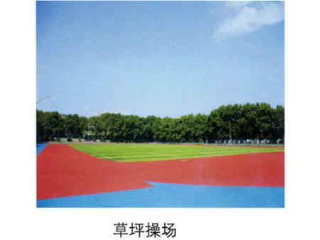 草坪操场1