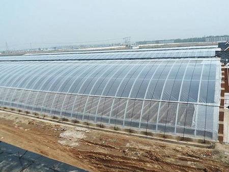 日光温室大棚建设之覆盖方法