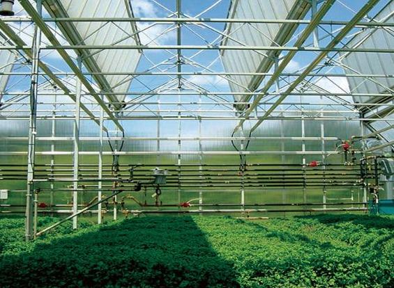 日光温室大棚建设应掌握棚内的通风