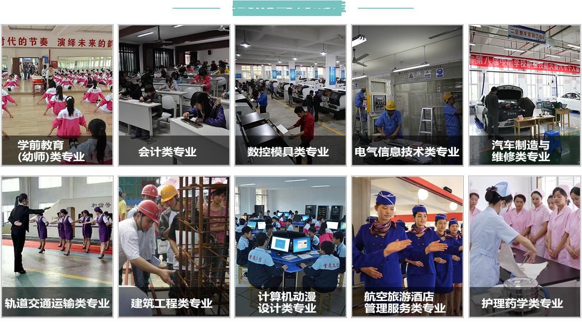 重庆职业技术学院特色专业分类