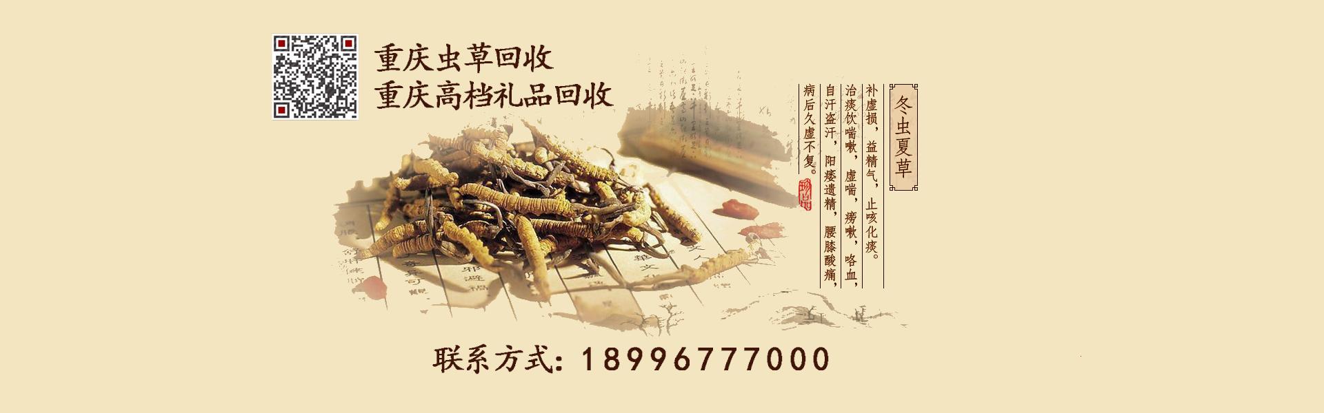 虫草回收Banner图