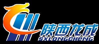 陕西龙成国际物流有限公司