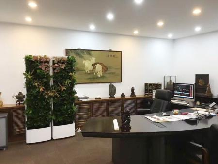 移动屏风植物墙(可租可售)