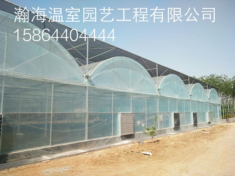 双拱双膜温室