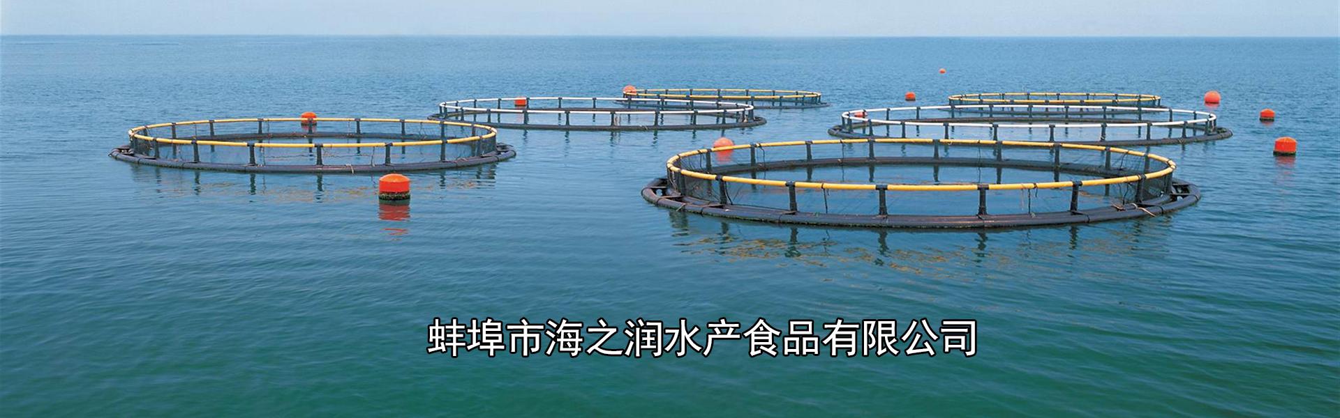 鱼产品供应厂家