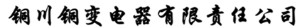 铜川铜变电器有限公司