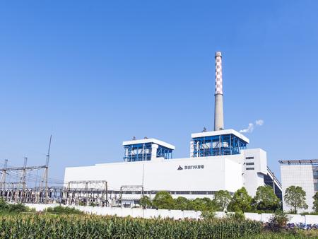 安徽池州九华发电有限公司
