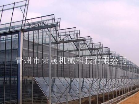 温室大棚 蔬菜种植温室大棚