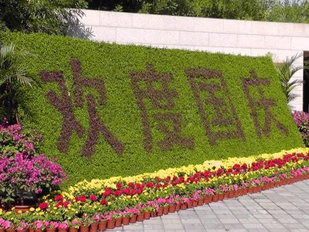 节庆绿植墙