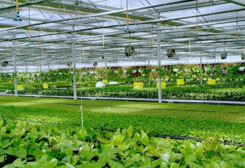 物联网智慧农业