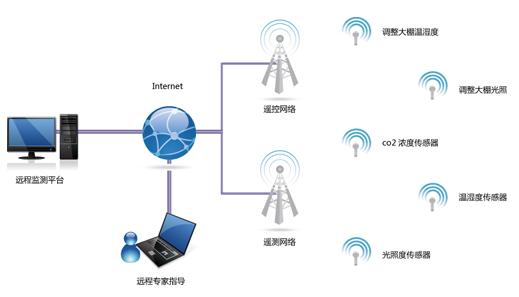 物联网传感器网络