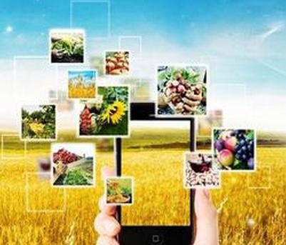 农业大数据