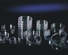 玻璃培养皿.jpg