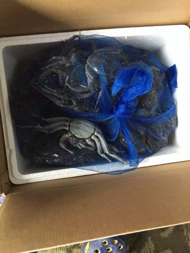 盘锦河蟹多钱一斤