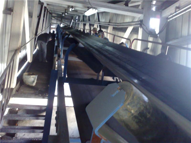 东风集团2x15MW+1x30MW输煤系统项目.jpg