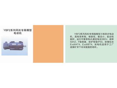 YBF2系列風機專隔爆型電動機.jpg