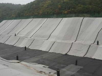 吉林省西部开发项目 灌区改造用复合土工膜