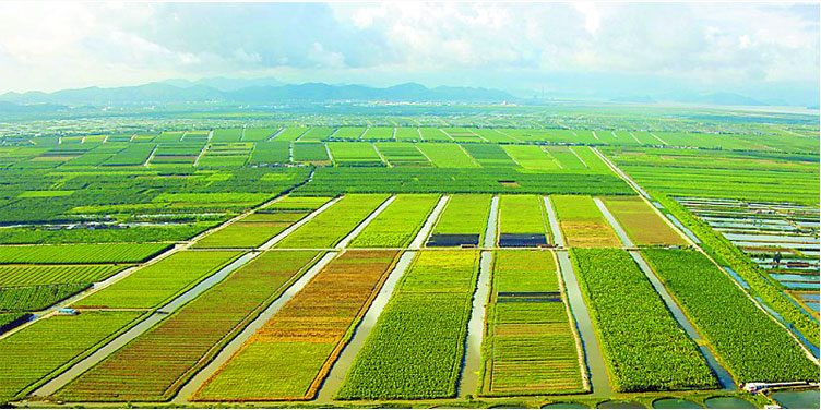 现代观光农业