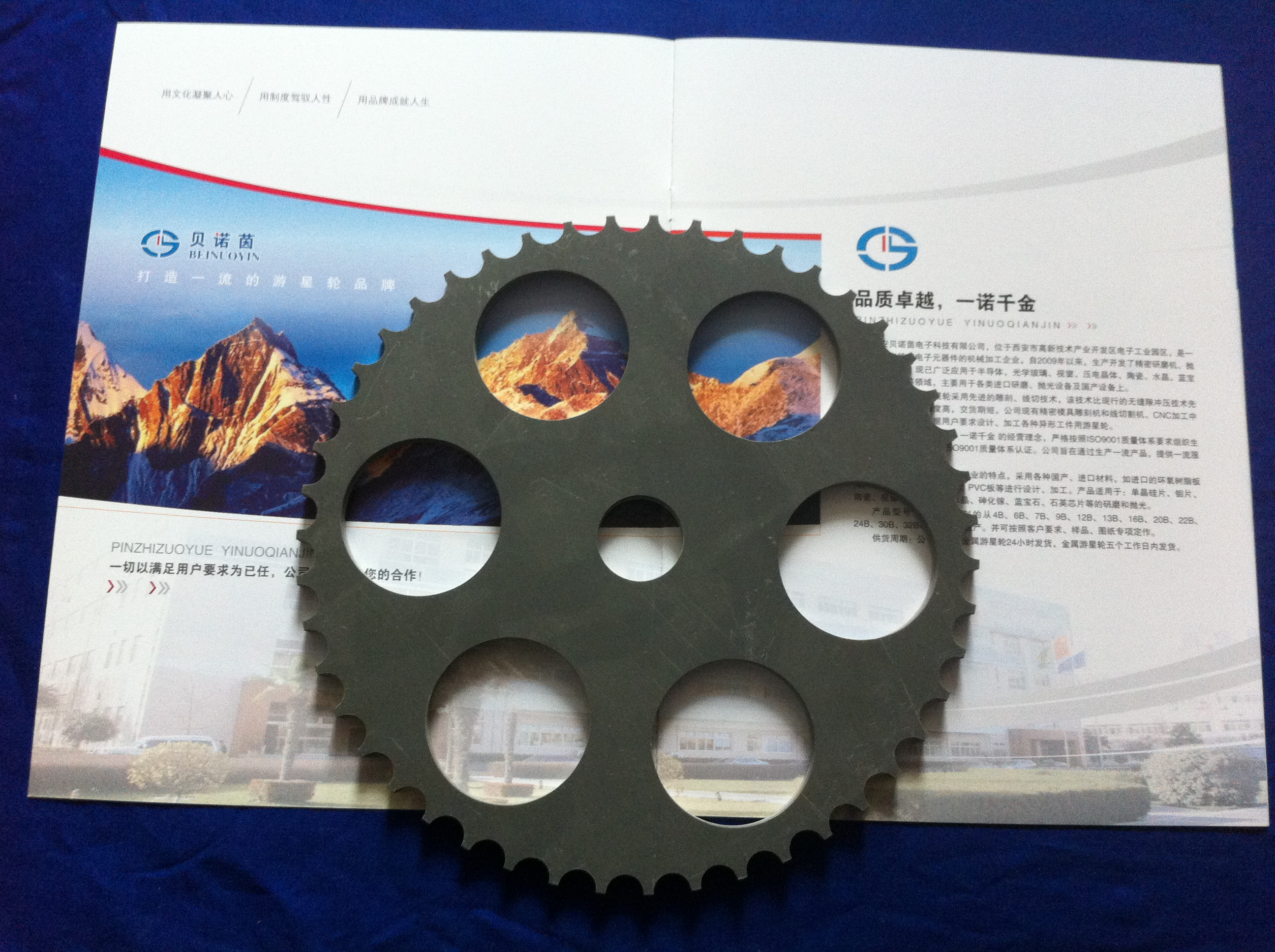 光学行业专用游星片 PVC.JPG