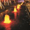 涌泉噴頭(帶管)
