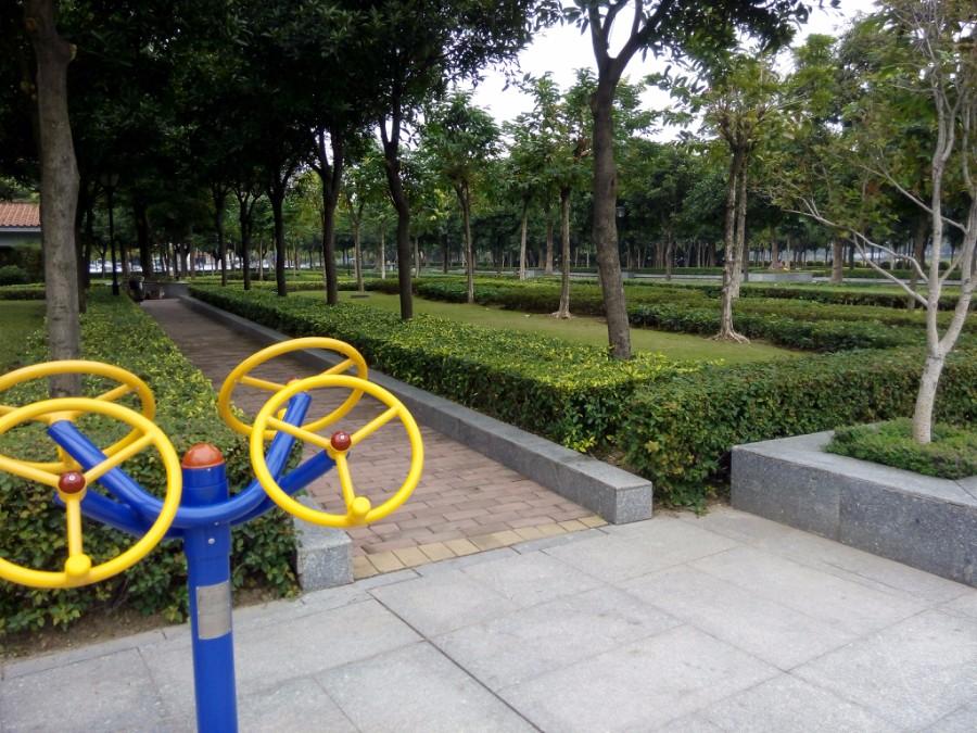 肇慶城區公共綠地養護項目-4.jpg
