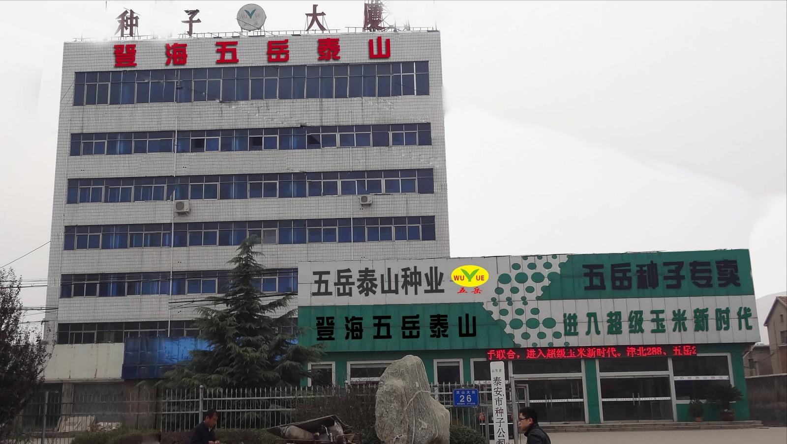 公司大楼照片.jpg