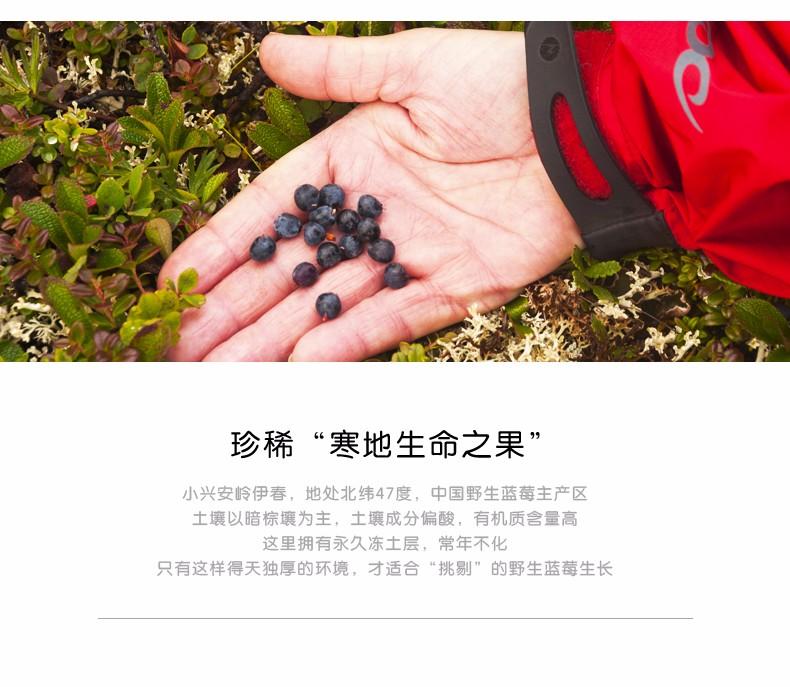 蓝莓干红酒|蓝莓果酒系列-伊春市山野饮品有限公司