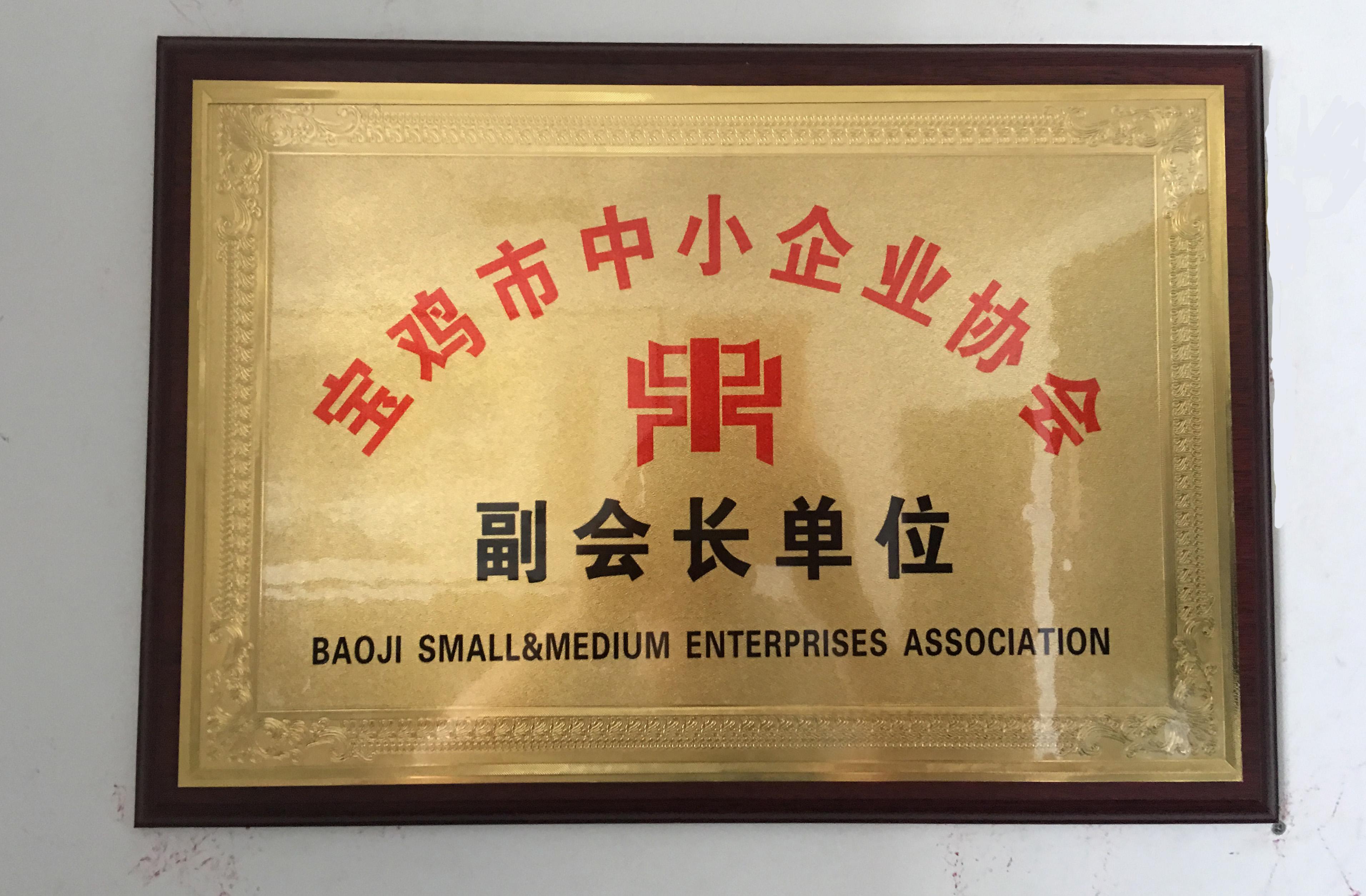 宝鸡市中小型企业协会副会长单位.jpg