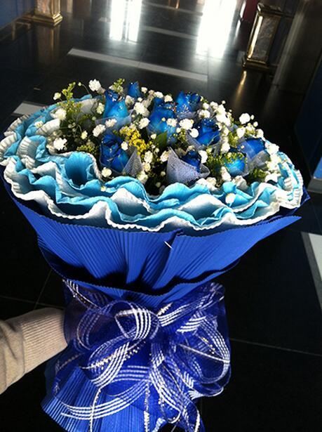 11枝藍玫瑰.jpg