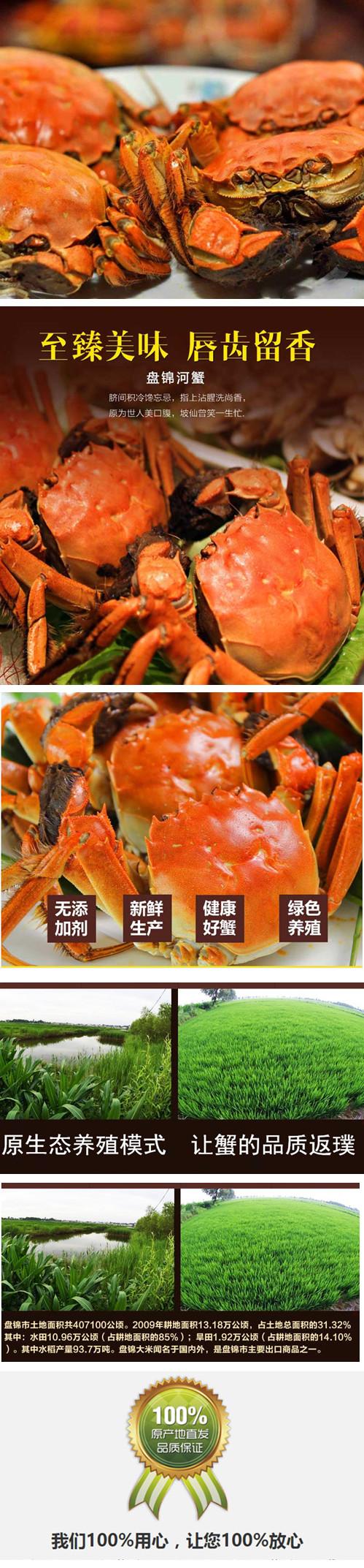 盤錦河蟹多少錢一盒