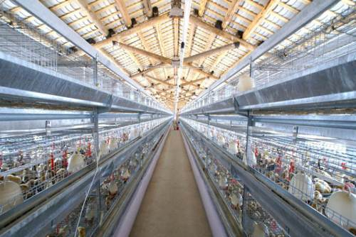 动物养殖采集监测系统