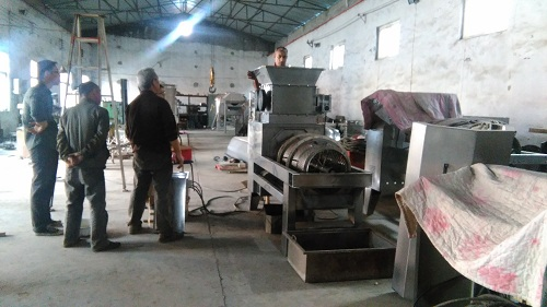埃及客户验收石榴机图片