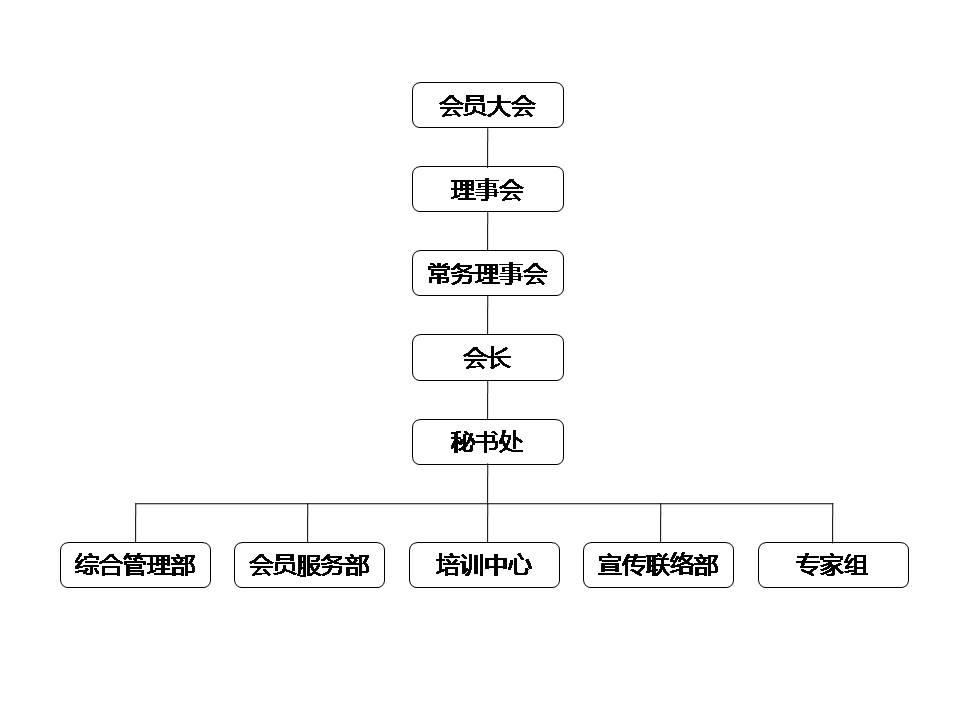 无需申请送18元彩金省防雷减灾协会组织架构.jpg
