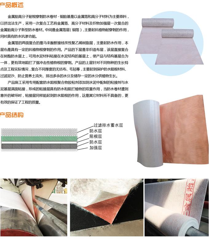 金属胎高分子防水卷材-介绍.jpg