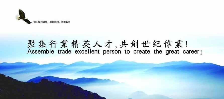 聚集行业精英人才,共创世纪伟业