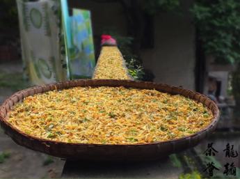 重庆茶文化推广