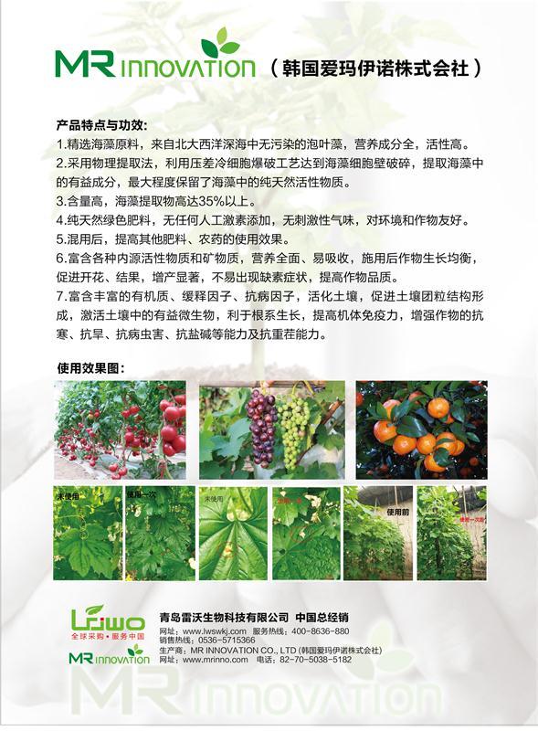 MANAON ALGA+ 藻餐彩页-2.jpg