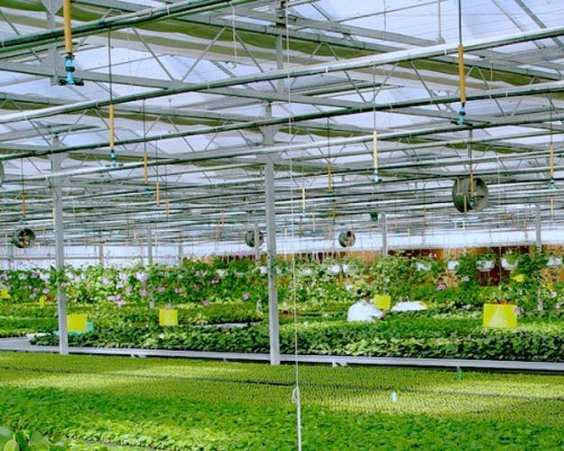 农业物联网2.png